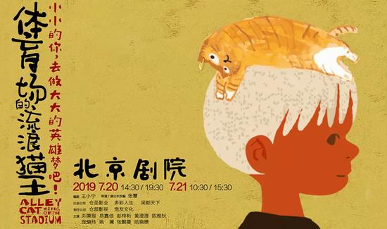 《体育场的流浪猫王》海报