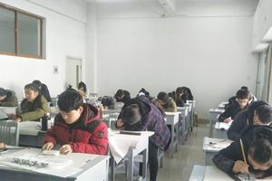 临沂大学艺考书法学报考比48:1成最大热门