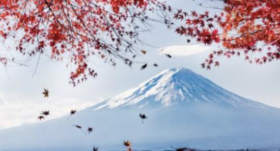 富士山 图片来源于网络