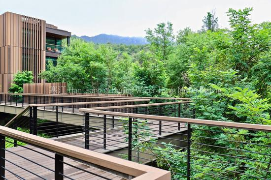 廊桥将林中的几栋小屋连在一起,行走其上,仿佛漫步林尖。