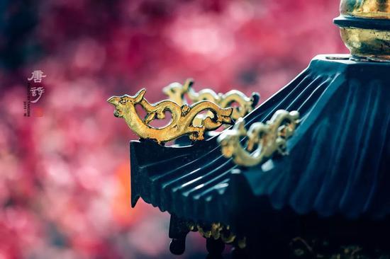 拍摄于五台山南山寺