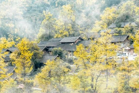 贵州有座冷门古村 即将迎来颜值巅峰