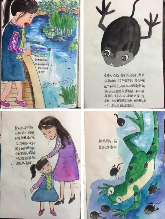 讲述了蝌蚪的故事