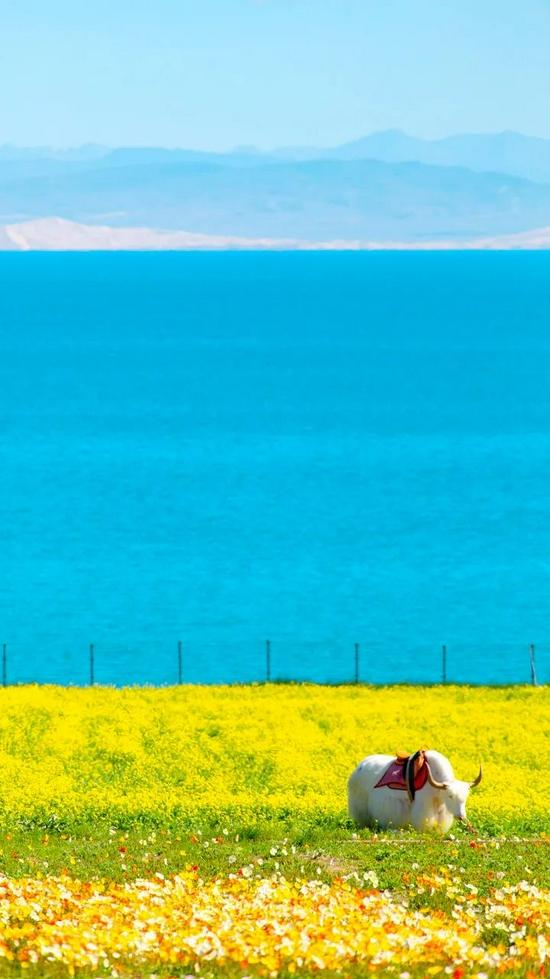 """中国最大的""""天空之镜"""" 有生之年一定要去一次"""