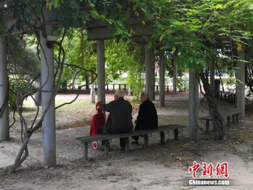 資料圖 中新網記者 張尼 攝