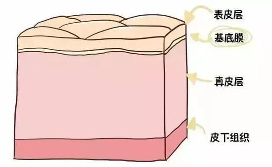 知道了皮肤结构,   你还指望护肤品给你补充玻尿酸么?!   玻尿酸本身十分柔软,   吸收水分后会膨胀,   能增加皮肤的含水量和弹性,   是医疗美容的常见材料。   但要说它会融化或者结冰,   也太夸张啦!   人体内水分的含量超过80%,这么多的水分基本都是靠玻尿酸来锁住的。玻尿酸是人体本身就具有的成分之一,能锁住自身500倍体积的水分。如果它会融化或者结冰,那皮肤早就撑不住啦!   所以,   说玻尿酸会融化结冰简直是无稽之谈!   更多精彩内容敬请关注@新浪医美