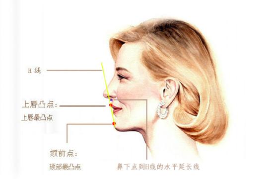 面部夹角图