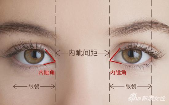 一张图告诉你什么是内眦间距、内眦角、眼裂