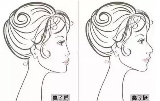 鼻子卡通图片手绘