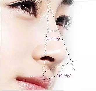 鼻部美学标准:什么样的鼻子才好看?