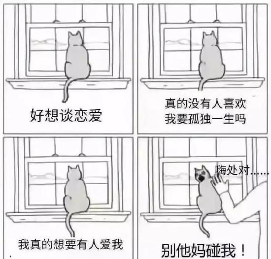 ▲圖片來源微博