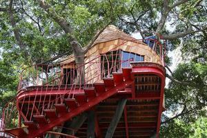 扛过无数台风 日本建筑师把树屋建成宫崎骏童话!