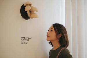 高学历女孩坚持做毛毡十年 还在东京办了艺术展