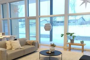 寒冷冬季 太爱她家的落地窗和窗外的雪景了