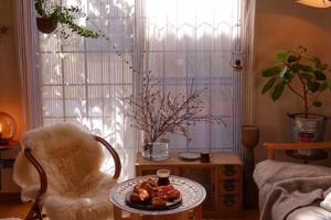 处处有植物顿顿有美食 这是花仙子的家吧