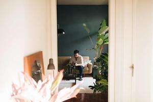 与植物同居是什么体验 给家带来宁静的力量