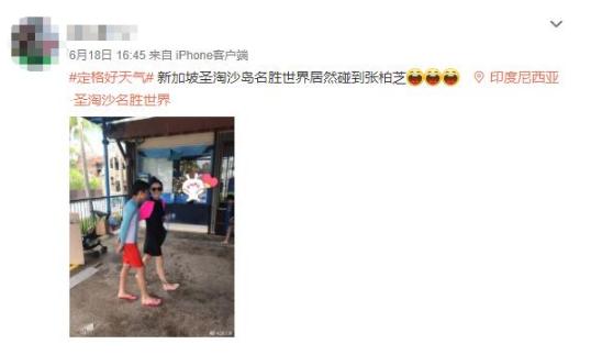 网友新加坡偶遇张柏芝