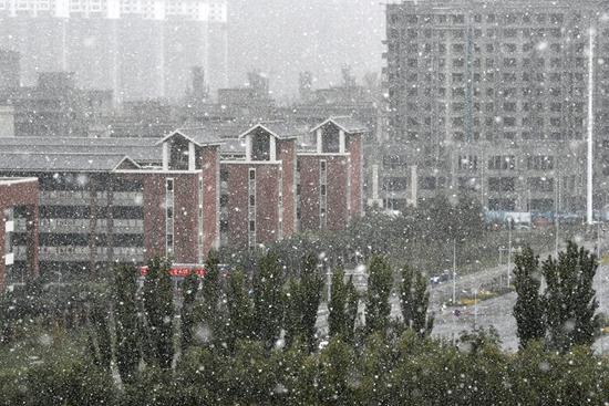 Snowfall hits Yinchuan, NW China's Ningxia