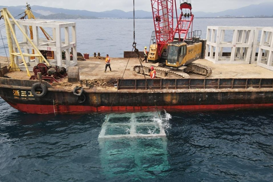Artificial reefs placed to improve marine ecology in S China's Sanya
