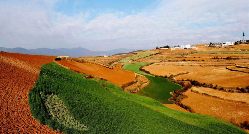 Scenery of red earth terraces in SW China's Kunming