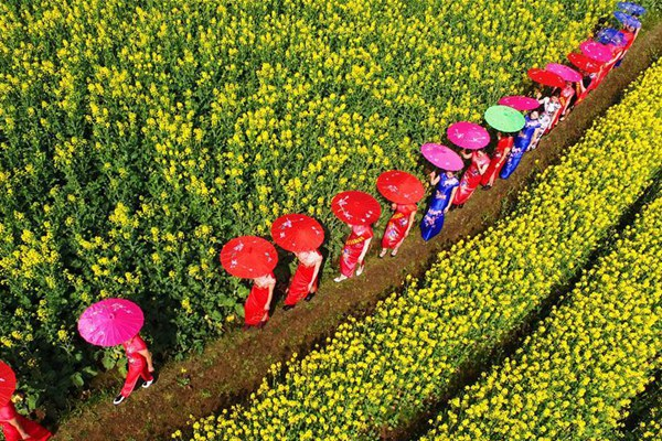 In pics: Spring scenery around China
