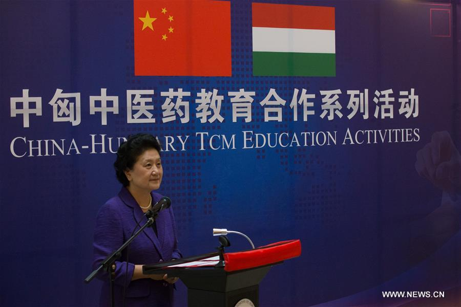 Visiting Chinese Vice Premier Liu Yandong speaks during the China-Hungary Traditional Chinese Medicine(TCM) education activities in Budapest, the capital of Hungary on June 18, 2017. (Xinhua/Attila Volgyi)