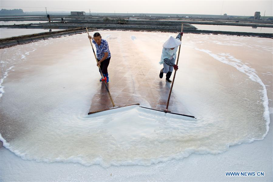 13Workers collect salt during salt farming season at Shanyao saltworks in Quanzhou City, southeast China's Fujian Province, Aug. 6, 2017. Covering an area of more than 6,666 hectares, the Shanyao saltworks have producing salt for more than 200 years. It is still one of the largest in Fujian Province and about 500 workers now work at the saltworks. (Xinhua/Jiang Kehong)