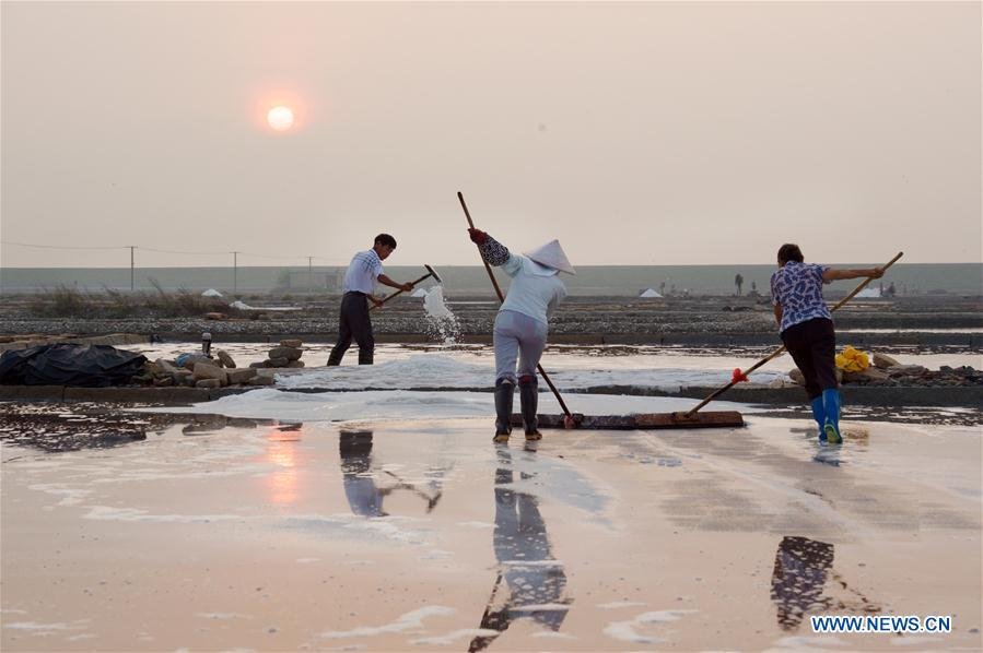 Workers collect salt during salt farming season at Shanyao saltworks in Quanzhou City, southeast China's Fujian Province, Aug. 6, 2017. Covering an area of more than 6,666 hectares, the Shanyao saltworks have producing salt for more than 200 years. It is still one of the largest in Fujian Province and about 500 workers now work at the saltworks. (Xinhua/Jiang Kehong)