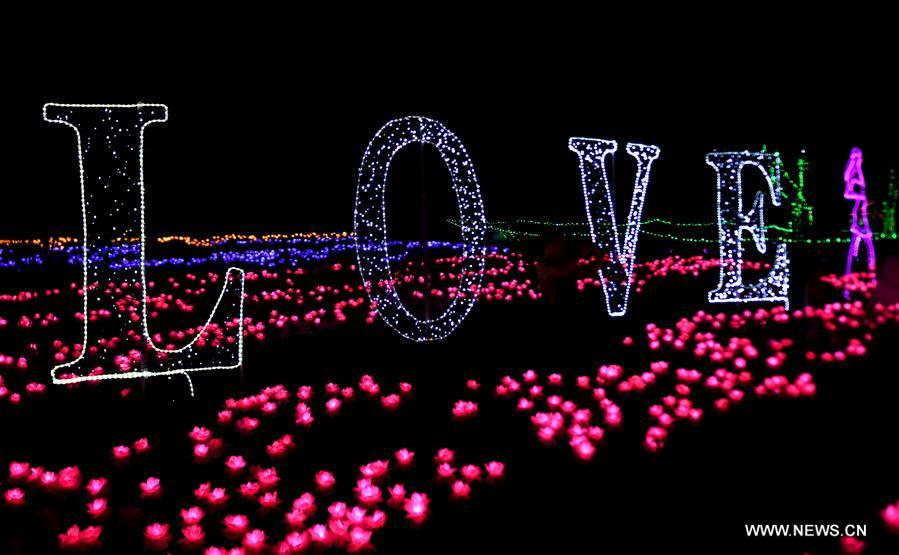 Photo taken on Aug. 10, 2017 shows a night view illuminated by lights in a park in Gu'an County of north China's Hebei Province. The county is hosting a light festival to attract tourists. (Xinhua/Wang Xiao)