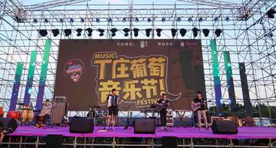Grape music festival held in east China's Jiangsu