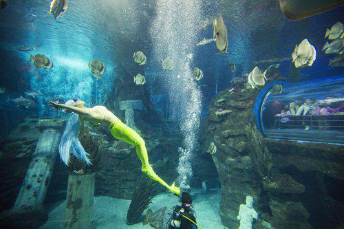 Liu performs underwater. Photo:CFP