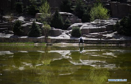 A man goes fishing in a park in Xining, northwest China's Qinghai Province, April 17, 2019. (Xinhua/Wu Gang)