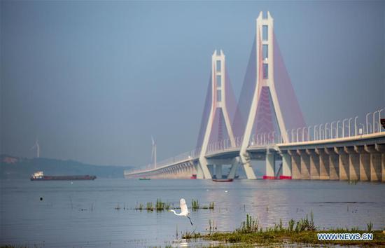 Photo taken on June 28, 2019 shows the Poyang Lake No. 2 Bridge in east China's Jiangxi Province. The 5.589-km Poyang Lake No. 2 Bridge, which links Duobao Township of Duchang County and Hualin Township of Lushan City in Jiangxi Province, opened to the public traffic on Friday. (Xinhua/Fu Jianbin)