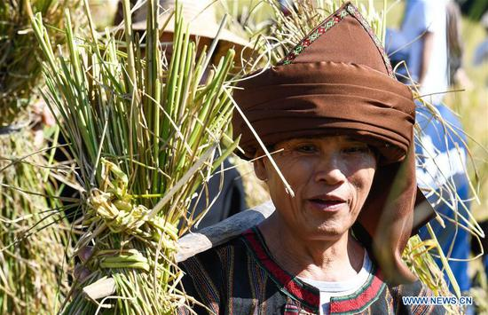 A villager goes back home after harvesting Shanlan rice in Yongchu Village, Qingsong Township, Baisha Li Autonomous County, south China's Hainan Province, Nov. 17, 2019. The annual Shanlan cultural festival of Baisha kicked off here on Sunday, on which the locals celebrated the bumper harvest of local Shanlan rice and prayed for a favorable weather for farming next year together. (Xinhua/Yang Guanyu)