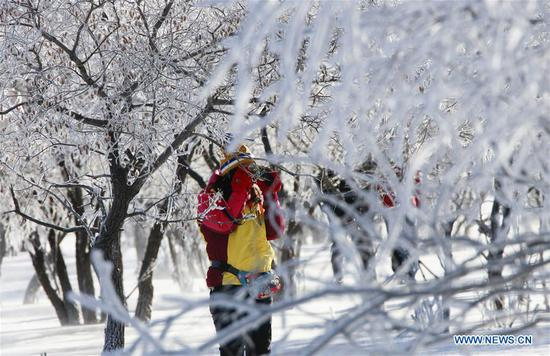 Tourists take photos of frost scenery in Hexigten Banner, north China's Inner Mongolia Autonomous Region, Jan. 2, 2019. (Xinhua/Liu Mancang)