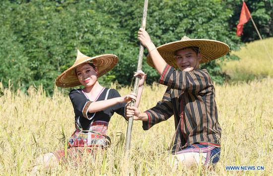 Actors perform an outdoor musical in a paddy field in Yongchu Village, Qingsong Township, Baisha Li Autonomous County, south China's Hainan Province, Nov. 17, 2019. The annual Shanlan cultural festival of Baisha kicked off here on Sunday, on which the locals celebrated the bumper harvest of local Shanlan rice and prayed for a favorable weather for farming next year together. (Xinhua/Yang Guanyu)