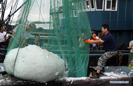 Fishermen load ice cubes into the boat before leaving for fishing in Rizhao, east China's Shandong Province, Sept. 1, 2019. The annual summer fishing ban, which was enforced on May 1 in the Yellow Sea and Bohai Sea, took an end on Sunday. (Xinhua/Wang Kai)