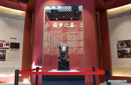 A bronze horse head sculpture looted from Yuanmingyuan is on display at Wenshu Pavilion of Zhengjue Temple in Yuanmingyuan, Beijing, capital of China, Dec. 1, 2020. A bronze horse head sculpture, a treasure of China's Old Summer Palace that went missing after an Anglo-French allied forces' looting 160 years ago, returned to its original palace home Tuesday. It is the first time that a lost important cultural relic from the Old Summer Palace, or