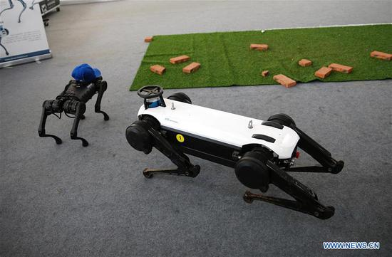 Two quadruped robots stage a performance after repair at the service robots exhibition area of the 2020 China International Fair for Trade in Services (CIFTIS) in Beijing, capital of China, Sept. 9, 2020. (Xinhua/Pan Siwei)
