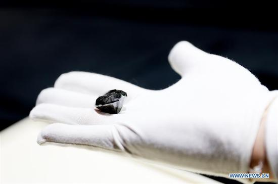 A black diamond weighing 88 carats is presented in Shanghai, east China, Oct. 26, 2020. With an estimated value of 37 million U.S. dollars, the diamond from Paris will be on display during the upcoming third China International Import Expo (CIIE) in Shanghai. (Xinhua/Fang Zhe)
