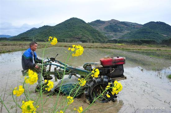 A farmer works in the field in Sanling Village, Long'an Township of Luocheng Mulam Autonomous County, Hechi, south China's Guangxi Zhuang Autonomous Region, March 6, 2019. This Wednesday marks the day of
