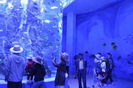 Visitors take pictures at the new aquarium in Xining, Qinghai Province on August 18, 2019. [Photo: IC]