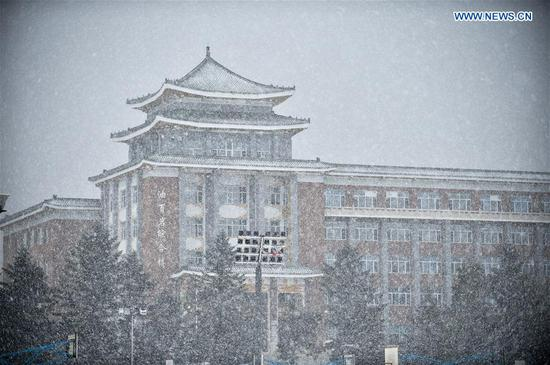 Photo taken on Nov. 13, 2019 shows the snow scenery of Jilin University in Changchun, capital of northeast China's Jilin Province. A snowfall hit Changchun on Wednesday. (Xinhua/Yan Linyun)