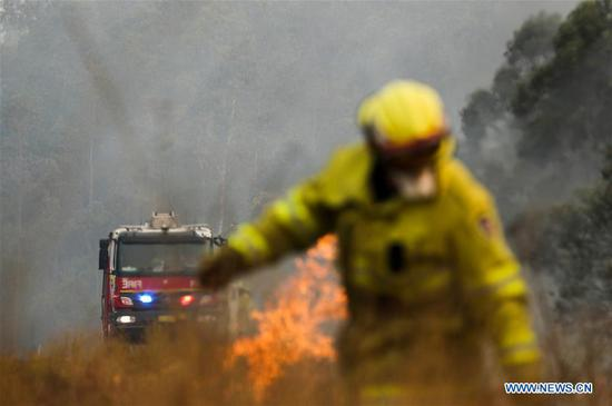 Photo taken on Nov. 11, 2019 shows the bushfire in Taree in New South Wales, Australia. The Australian government launched the National Bushfire Recovery Agency which would be funded with an initial two billion Australian dollars (1.38 billion U.S. dollars) on Monday. (Xinhua/Bai Xuefei)