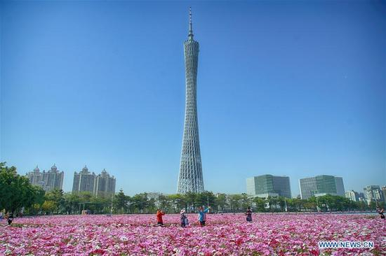 Photo taken on April 8, 2018 shows the view of Canton Tower with flowers at Haixinsha Park in Guangzhou, capital of south China's Guangdong Province. (Xinhua/Cai Yang)