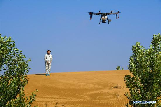 A technician controls a drone to sow seeds at the Kubuqi Desert, north China's Inner Mongolia Autonomous Region, July 11, 2018. Kubuqi, the seventh largest desert in China, is a good example of China's success in alleviating desertification. About 6,460 square kilometers of the Kubuqi desert has been reclaimed in the last 30 years. (Xinhua/Peng Yuan)