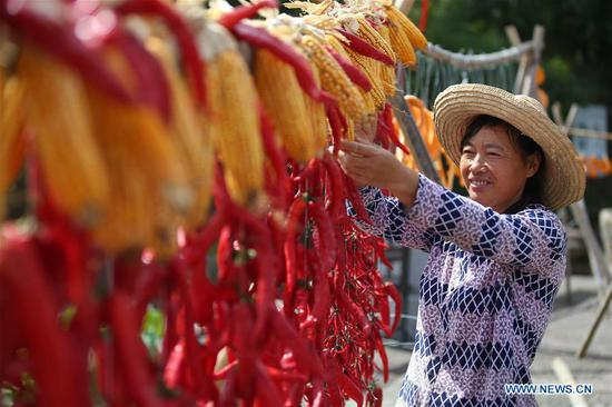 A villager airs chillies and corns at Chengkan Ancient Village in the city of Huangshan, east China's Anhui Province, on Sept. 12, 2018. (Xinhua/Shi Yalei)