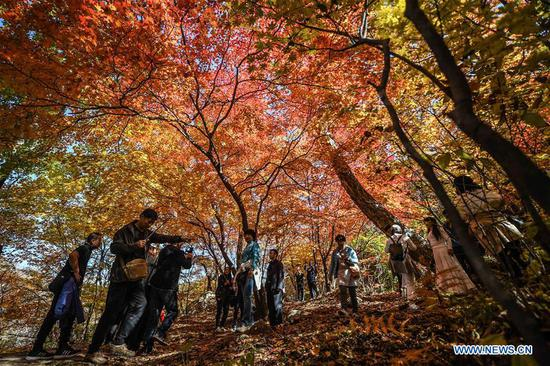 Tourists visit Laobiangou scenic spot during the week-long National Day holiday in Benxi, northeast China's Liaoning Province, Oct. 5, 2018. (Xinhua/Pan Yulong)