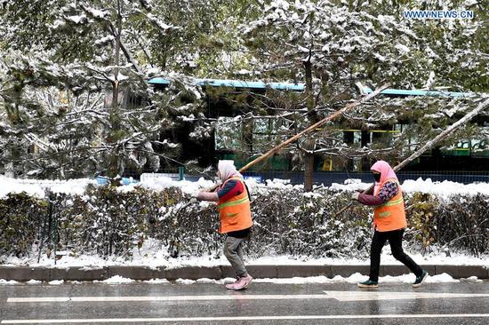 Staff workers clean up snow on the trees in Xining, capital of northwest China's Qinghai Province, Nov. 4, 2018. Xining saw a snowfall on Saturday. (Xinhua/Zhang Long)