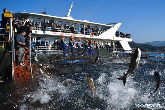 Visitors watch a huge-fishing-net harvest on the Qiandao Lake in Hangzhou, capital of east China's Zhejiang Province, Nov. 28, 2018. More than 30 fishermen took part in a huge-fishing-net harvest here on Wednesday. (Xinhua/Huang Zongzhi)